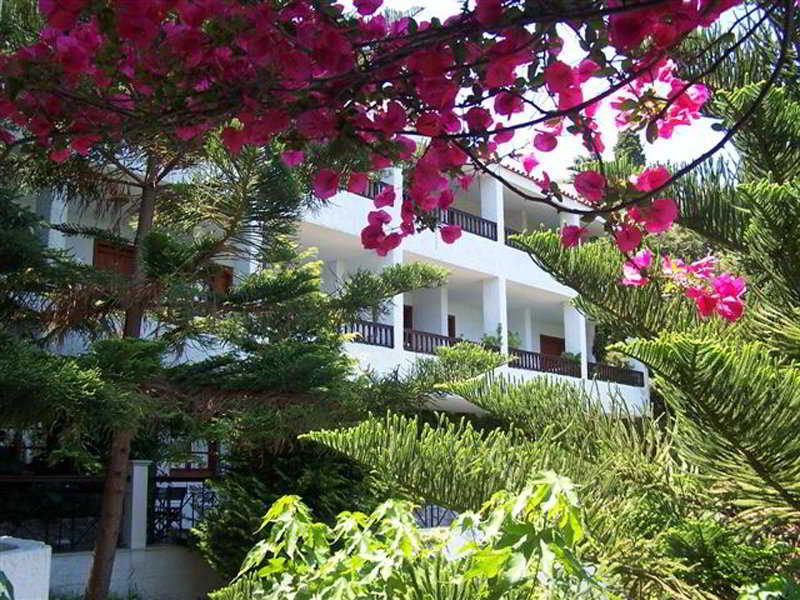Hotels in Samos: Daphne Hotel
