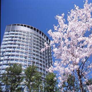 Hotel Grand Arc Hanzomon image