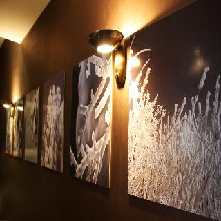 Hotel Arbre De Gel
