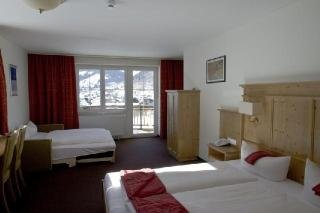 Harmony Hotel Harfenwirt, Niederau