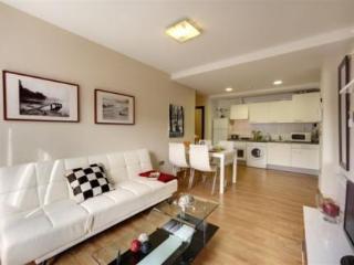 Apartamentos Bilbao Apartamentos Atxuri
