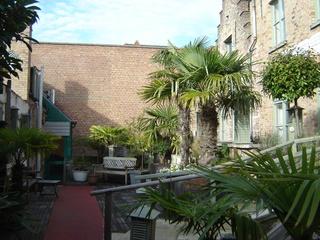 Koffieboontje Hotel - Terrasse
