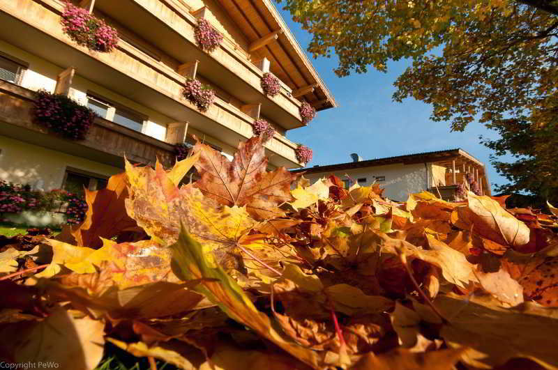 Hotels in Austrian Alps: Hotel-Farm Pirchner Hof in Tyrol