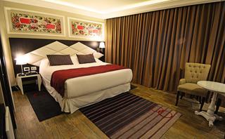 http://photos.hotelbeds.com/giata/55/556721/556721a_hb_ro_014.jpg