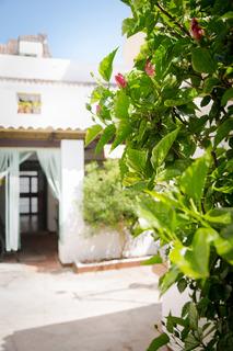 Hotels in Costa del Sol: Holidays2Fuengirola