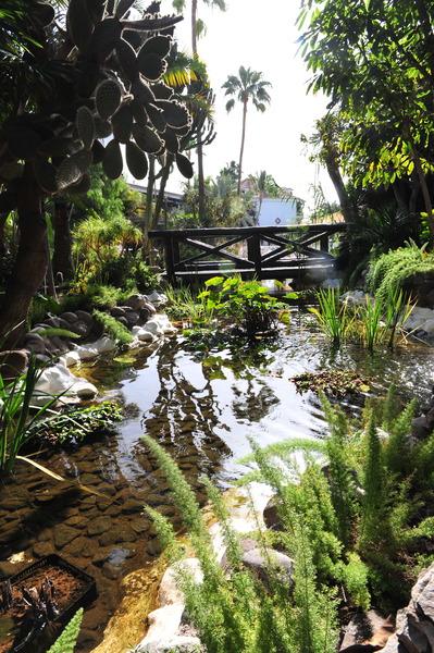 Parque Tropical 11