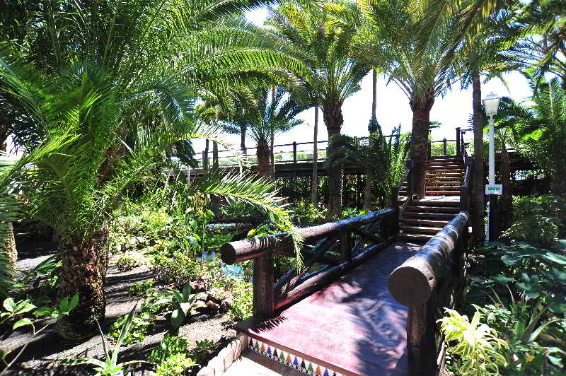 Parque Tropical 17