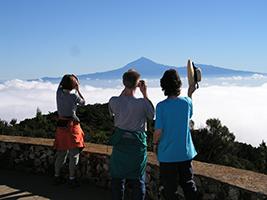 Ausflüge in La Gomera - El Cedro trekking