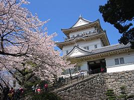 Hakone Excursions & Tours - Hakone and Odawara castle tour - Private