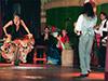 Espectáculo de flamenco El Palacio andaluz
