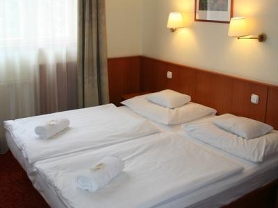 Korona Hotel Panzio