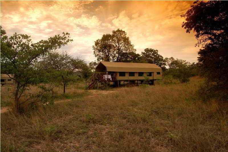 Kwafubesi Tented Safari Camp, Waterberg
