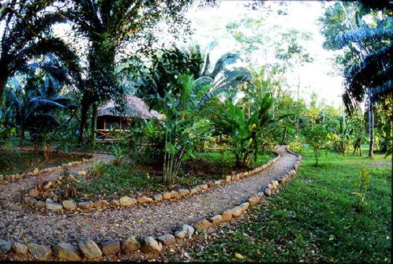 Ian Andersons Caves Branch Jungle Lodge