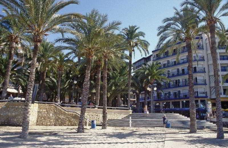 Colon, Alicante