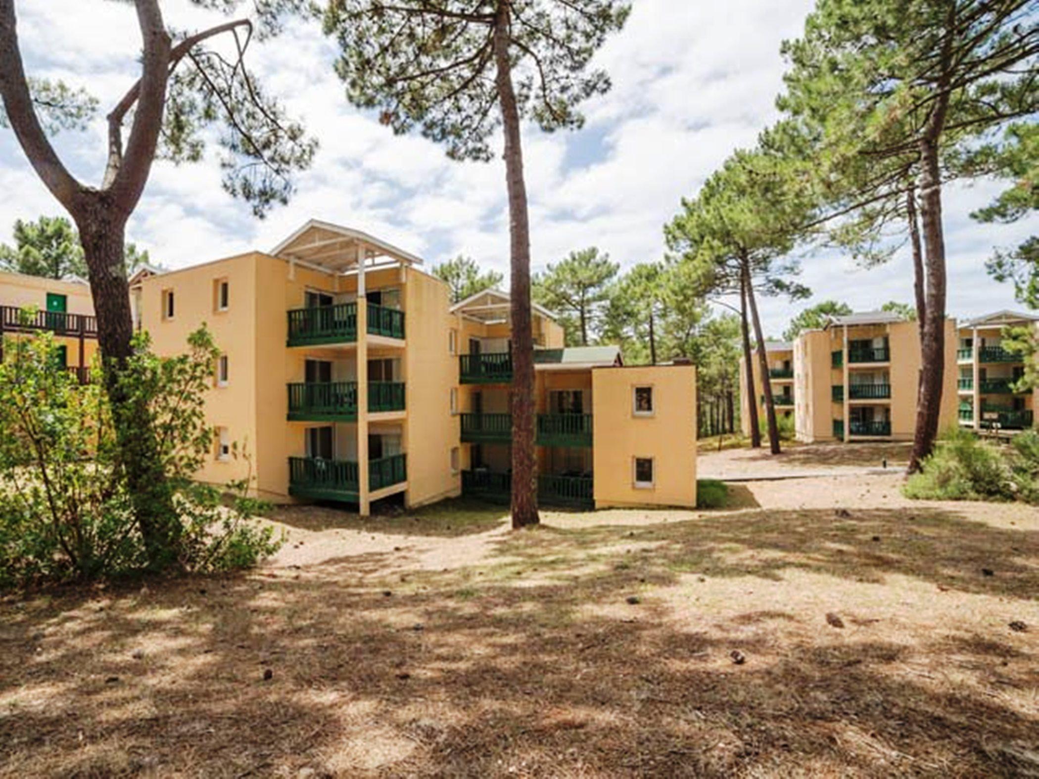 Les Grands Pins, Gironde