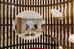 http://photos.hotelbeds.com/giata/small/13/137514/137514a_hb_r_012.jpg