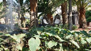 Parque Tropical - Diele