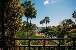 Parque Tropical - Terrasse