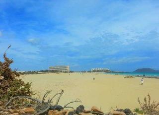 Riu Oliva Beach - Strand