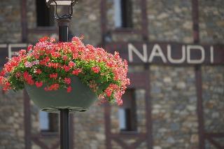 Naudi - Generell