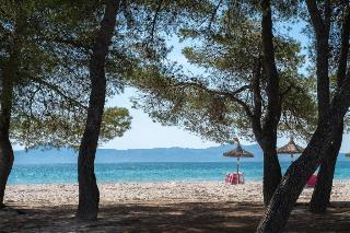 Ferrer Playa de Alcudia - Strand