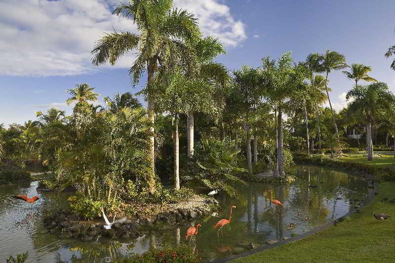 Melia Caribe Tropical All Inclusive Beach & Golf