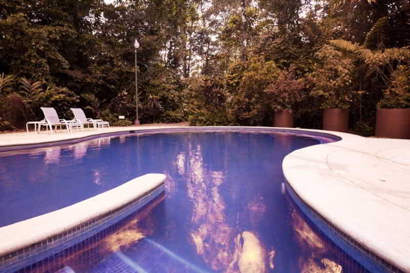 Selva Verde Lodge & Rainforest Reserve - Pool