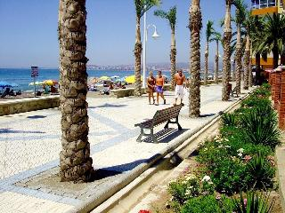 Intercentro Algarrobo-Costa - Strand