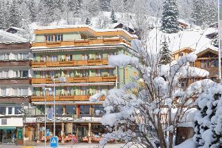 Hotel Central Wolter - Grindelwald - Generell