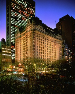 Plaza New York, Fifth Avenue At Central Park…