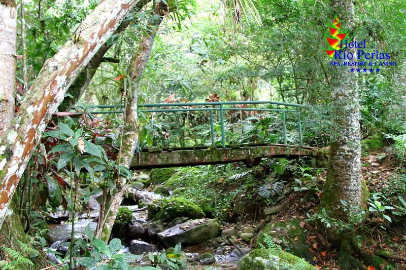 Rio Perlas Spa & Resort - Generell