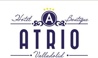 Hotel Boutique Atrio, Núñez De Arce,5