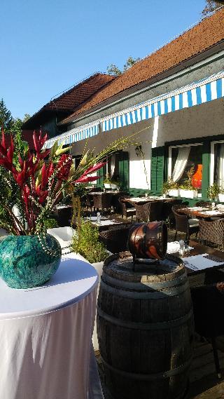 Ljubljana Resort - Bar