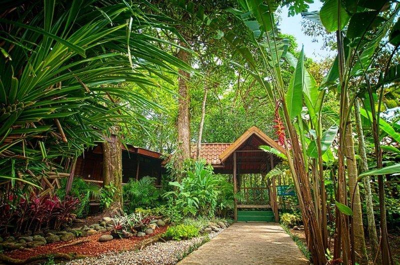 Pachira Lodge - Generell