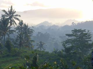Alila Manggis, Jl. Raya Buitan,, Desa Buitan…