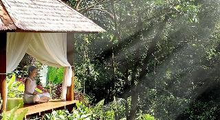 Maya Ubud Resort & Spa, Jalan Gunung Sari Peliatan,…