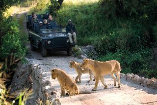 Lion Sands River Lodge - Sport