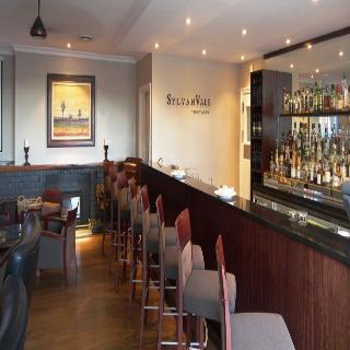 Devon Valley Hotel - Bar