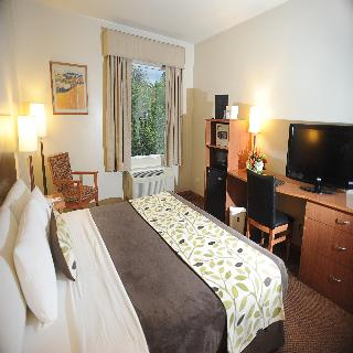 Sleep Inn Paseo Las Damas - Zimmer