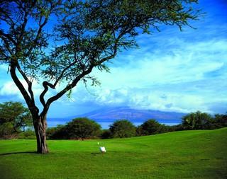 Four Seasons Resort…, 3900 Wailea Alanui Drive,
