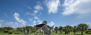 Pelicano, Cayo Largo Del Sur. Archipielago…