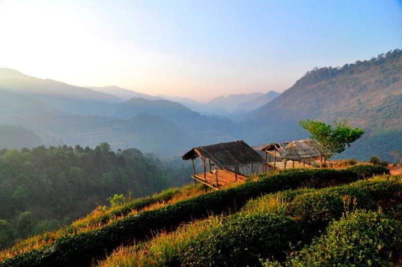 Angkhang Nature Resort, Moo 5, Baan Koom, Mae Ngon,…