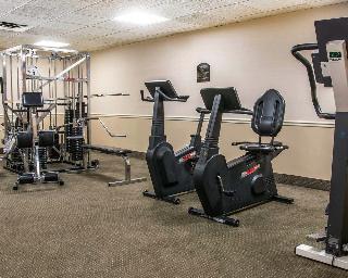 Comfort Inn (Livonia), 29235 Buckingham Ave.,