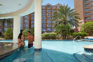 Divi Aruba Phoenix Beach Resort - Bar