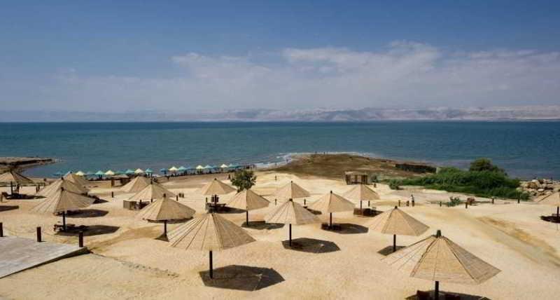 Dead Sea Spa - Bar