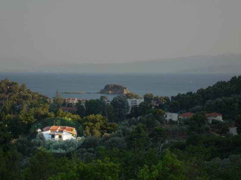 Zachos, Troulos Area,