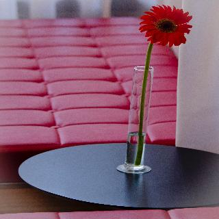 Apart Hotel & Spa Congreso - Diele