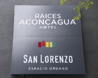 Raices Aconcagua - Generell