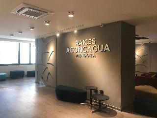 Raices Aconcagua - Diele