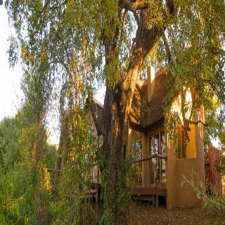 Shishangeni Main Lodge, Mpanamana Concession, Crocodile…